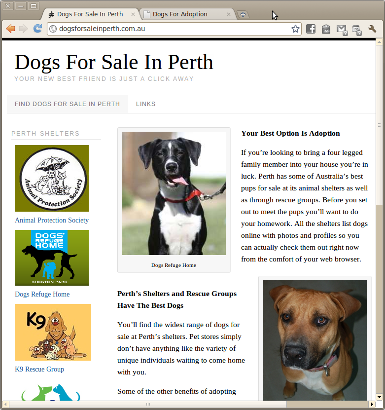 Pound Dogs For Sale Perth